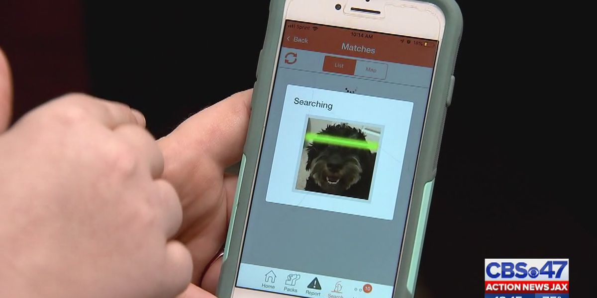 Clay County introduces facial recognition to help locate missing pets