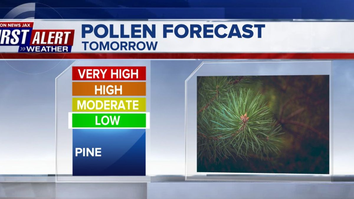 Jacksonville area to get an early start to pollen season