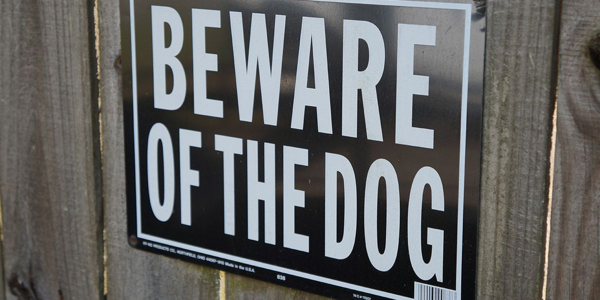 Man dies after being attacked by multiple 'aggressive dogs,' police say