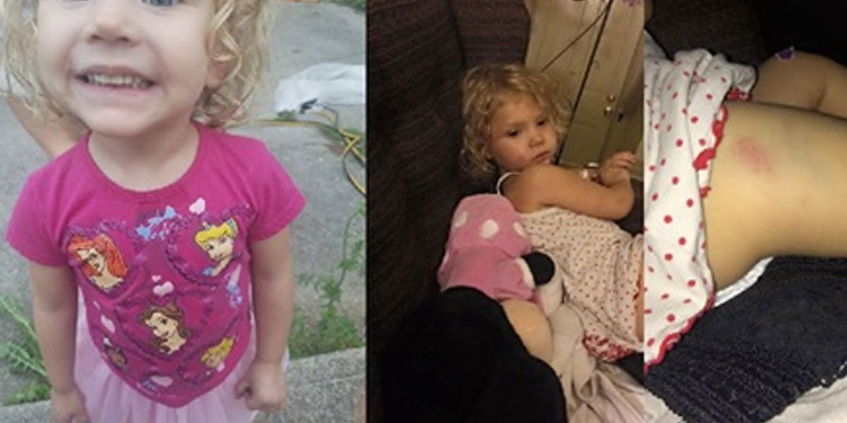 Teen babysitter accused of putting 3-year-old in washer, dryer