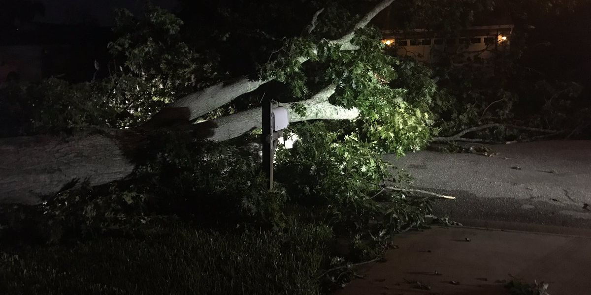 Cleaning up after Tuesdays storms in the Jacksonville area